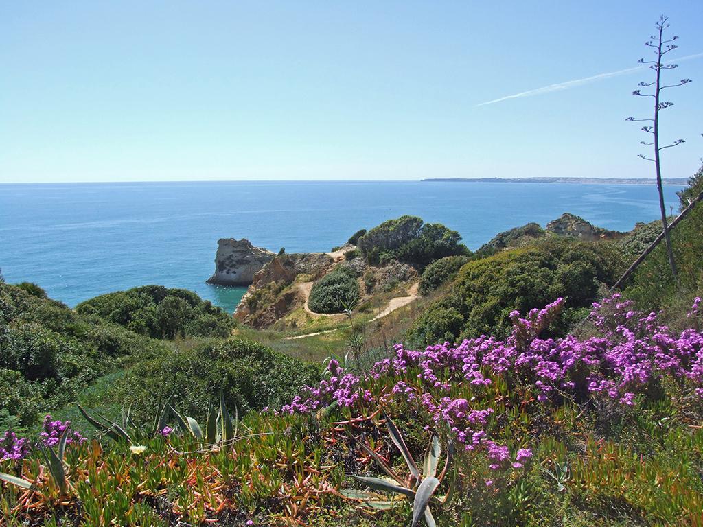 Praias Algarve – Bellevue No.1